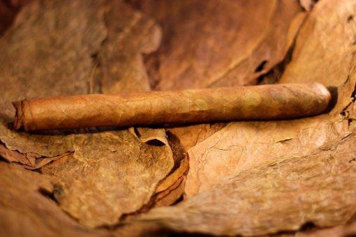 Dominican Magic Sweet Cigar