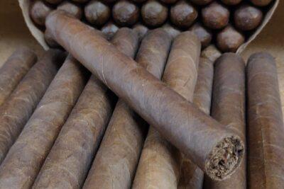 Cognac Cigar